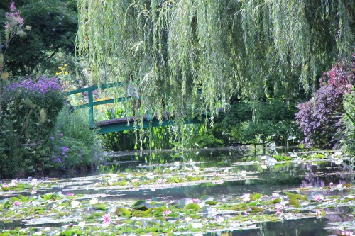 fondation claude monet, waterlilies, giverny, claude monet, jardin claude monet, france, musée des impressionnistes
