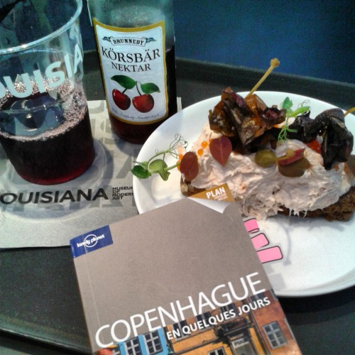 copenhague,blog voyages