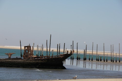 namibie,pelican point sight walvis bay,voyage en namibie