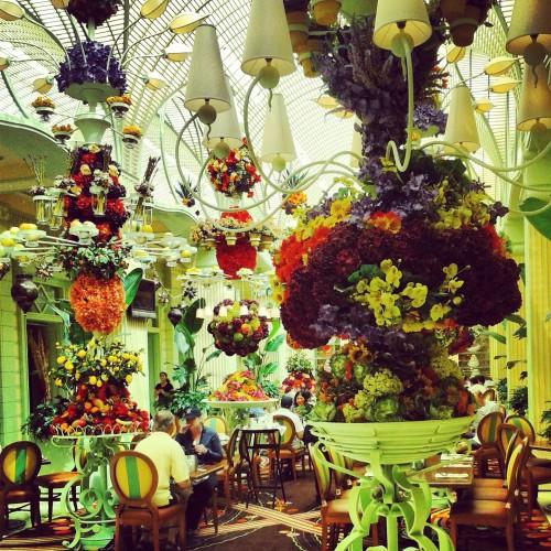 blog voyage,las vegas,wynn las vegas,the buffet at wynn