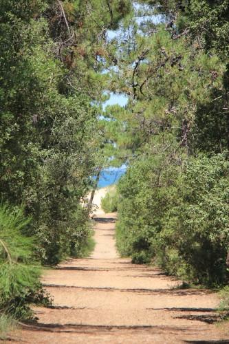 vacances,oléron,île d'oléron,vacances à oléron,roudoudous,fort boyard