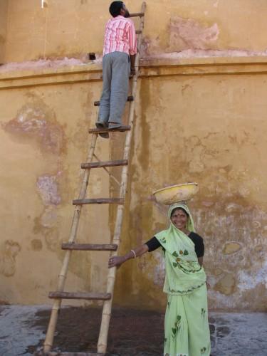 Saris (9).jpg