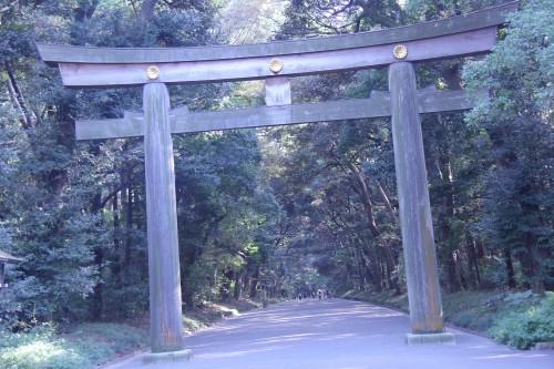 omikuji drawer sensō-ji temple tokyo japan,october 2011 (black and voyage au japon,trip to japan,tokyo,japon,shinjuku,asakusa,ueno,ginza,meiju jingu,parc,ueno onshi kōen,musée national de tokyo,meiju jingu