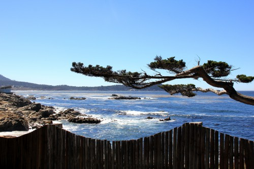 blog voyage,carmel by the sea,us west coast road trip