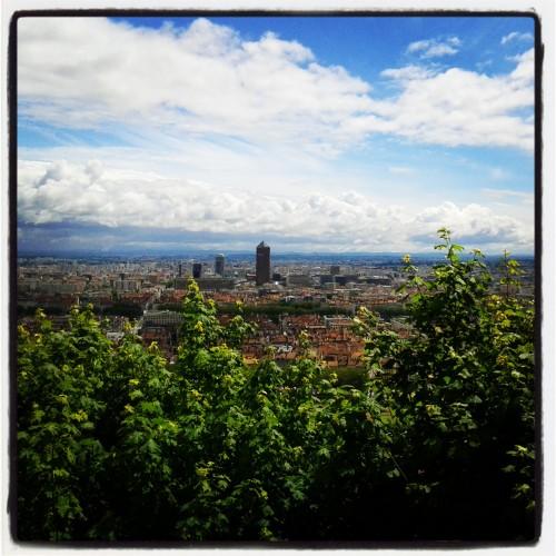 lyon,un week end à lyon,blog voyage,tourisme,l'aristo du coeur lyon,jeong hwa choi  flower tree