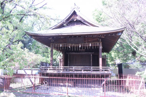 omikuji drawer sensō-ji temple tokyo japan,october 2011 (black and voyage au japon,trip to japan,tokyo,japon,shinjuku,asakusa,ueno,ginza,meiju jingu,parc,ueno onshi kōen,musée national de tokyo