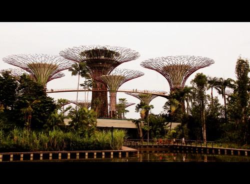 ku dé ta,ku dé ta singapour,marina bay sands singapour,new asia bar,new asia bar singapour,swisshotel,swisshotel singapour,gardens by the bay,gardens by the bay singapour,ku de ta,ku de ta marina bay sands,raffles,singapour,singapore,singapore sling,blog voyage,haji lane,haji lane singapour,shopping à singapour
