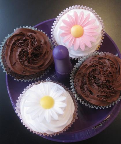 Synie's cupcakes (3).JPG